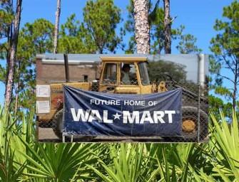 Walmart Building Superstore On Endangered Forest Lands