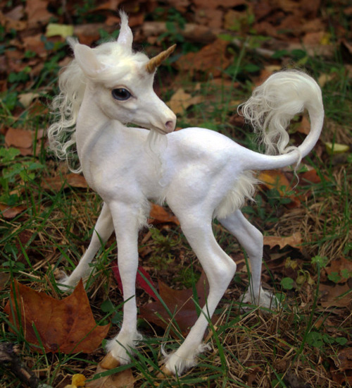 First Baby Unicorn Discovered
