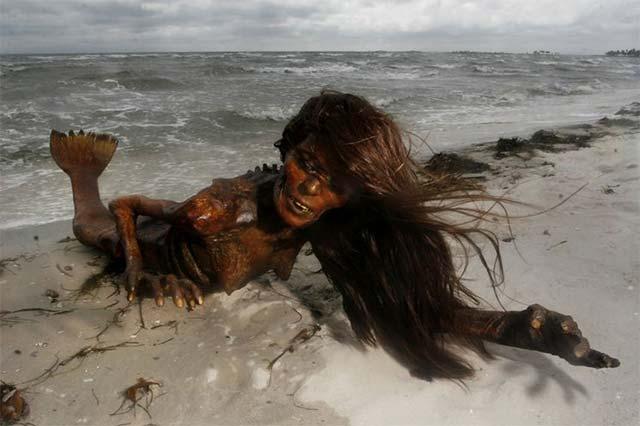 dead-mermaid