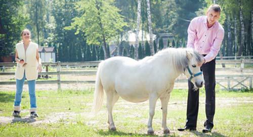 close-pony-man-woman2