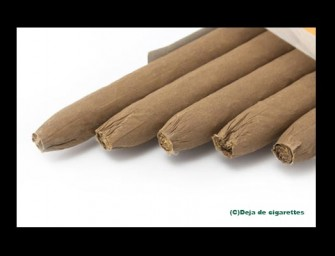 Feces Flavored Cigarettes Will Help Smokers Quit