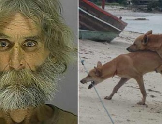 """Man Arrested for Attempting to Kill """"Homosexual Dogs"""""""